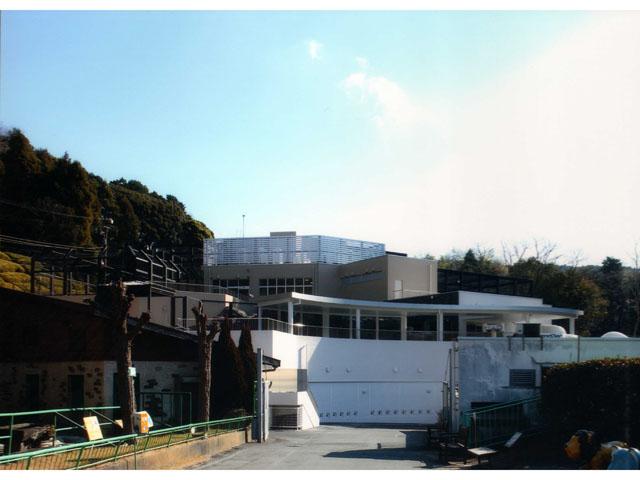 静岡市立 日本平動物園 猛獣館299